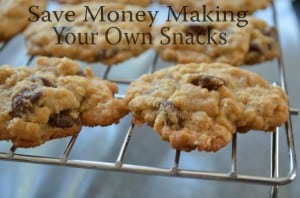 Save Money Making Your Own Snacks