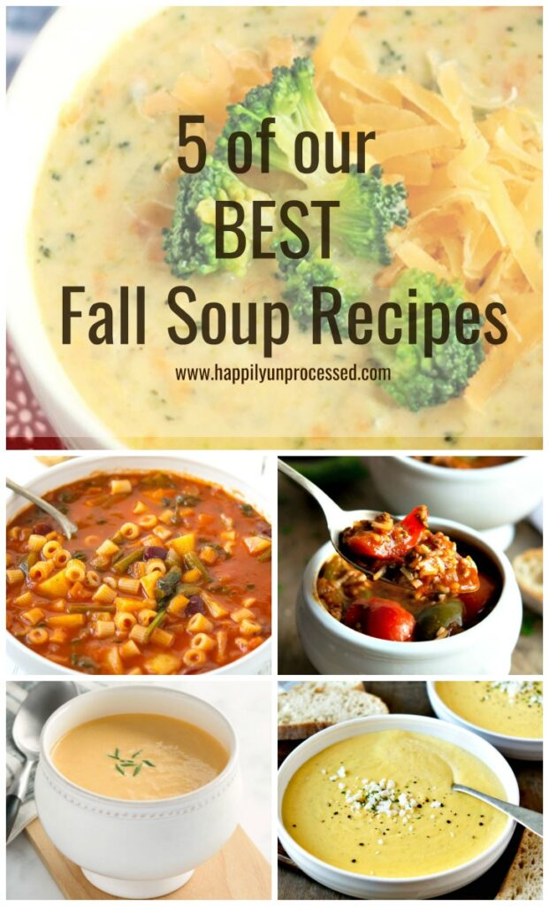 5 Best Fall Soup Recipes.jpg 621x1024 - 5 Delicious Fall Soup Recipes
