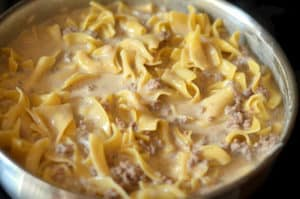 Homemade Hamburger Helper ~ Beef Stroganoff