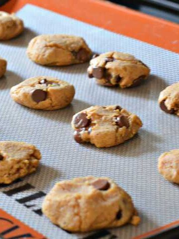 093pic 360x480 - Peanut Butter & Chocolate Chip Cookies (Gluten Free)
