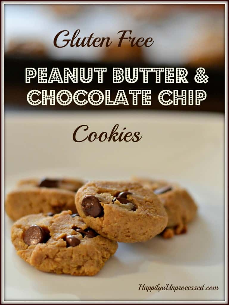 101pic4 769x1024 - Peanut Butter & Chocolate Chip Cookies (Gluten Free)