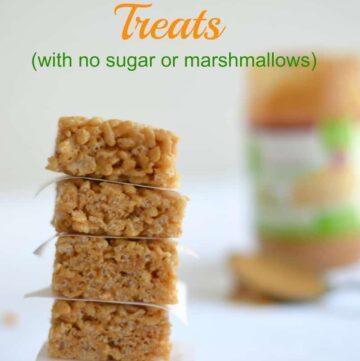 042pic1 360x361 - Crispy Rice Treats (Sugar Free, Gluten Free, Marshmallow Free)