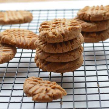 peanut butter cookies.jpg 360x361 - Flourless Peanut Butter Cookies