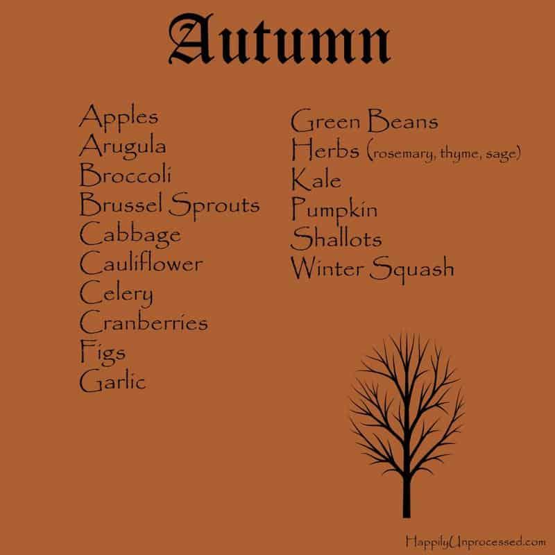autumn 1024x1024 - WHAT'S IN SEASON?