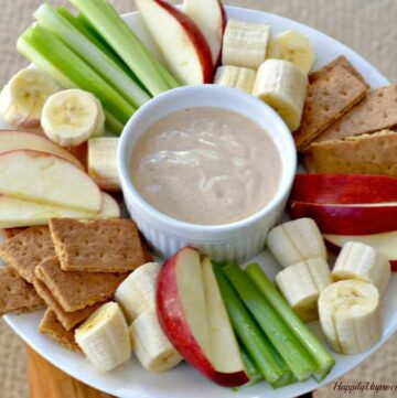 030pic 360x361 - Peanut Butter Yogurt Dip