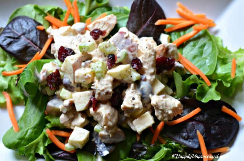 yogurt based chicken salad 1024x679 - Chicken Salad with Greek Yogurt, Apples and Pecans