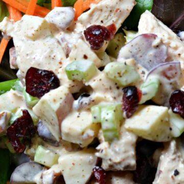 yogurt based chicken salad1 360x361 - Chicken Salad with Greek Yogurt, Apples and Pecans