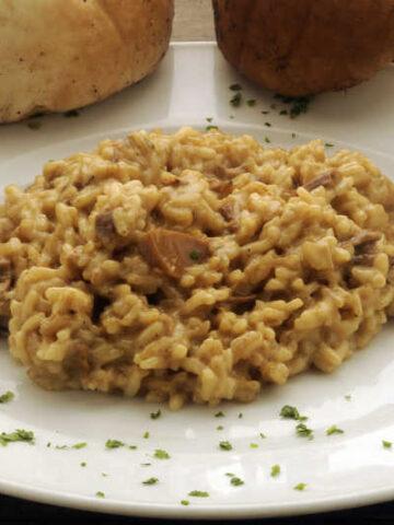 close up mushroom risotto