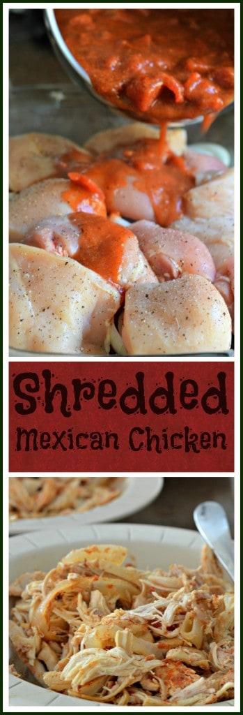 shredded-mexican-chicken